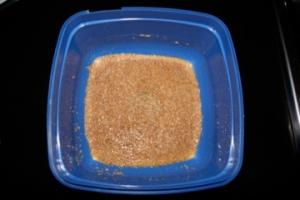 Wild yeast - Day 1